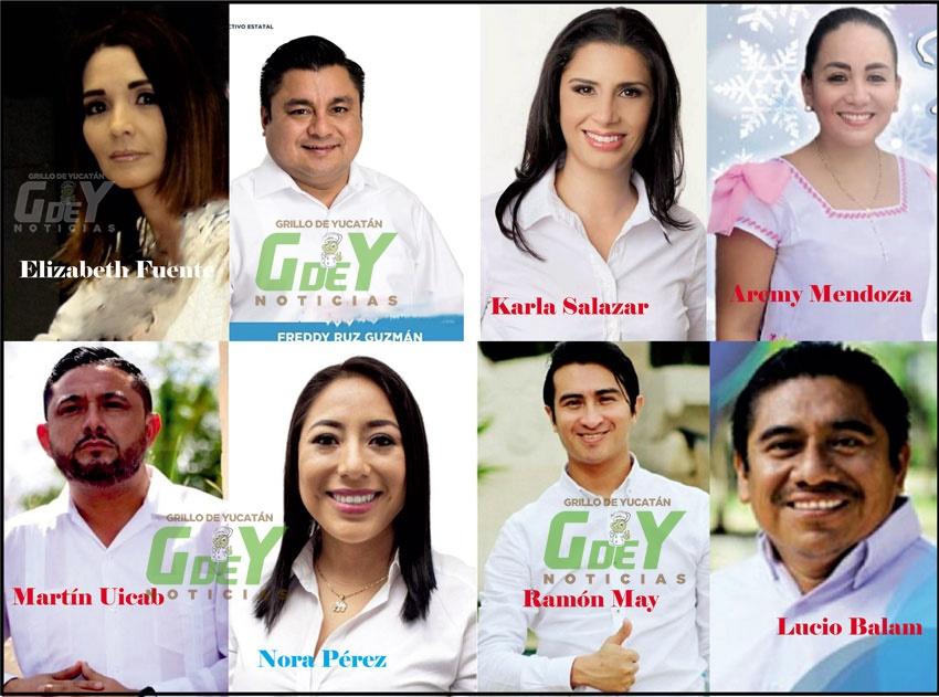 Más de una decena de panistas de Yucatán quieren ser diputados locales