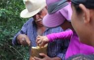 Agricultores y productores de Oxkutzcab podrán capacitarse para mejorar la venta de productos