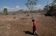 Habría una sequía intensa en Yucatán, afirma un especialista