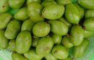 Comer mango y plátano verde previene el cáncer de colón