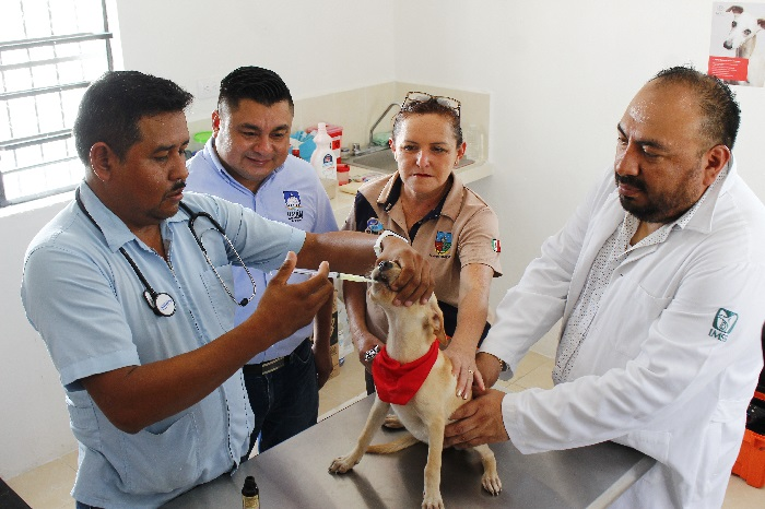 Estrenan la veterinaria municipal de Umán, con servicios a bajo costo