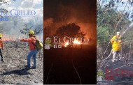 Alarmante aumento de incendios en Yucatán: Más del 200%, respecto a 2018