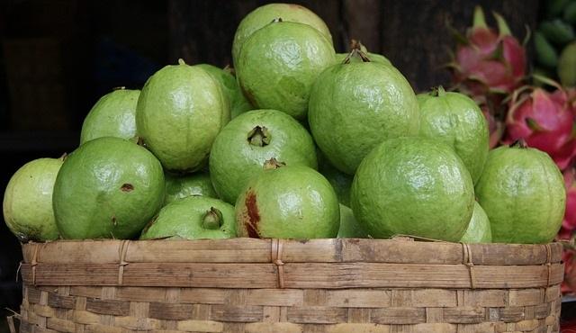 Comer guayaba te ayudará a bajar de peso