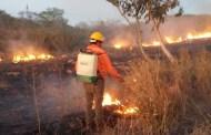 La temporada de incendios dejó 700 hectáreas quemadas en Oxkutzcab