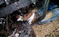 """Muere aplastado por la """"pipa"""" que conducía, cerca de Texán Palomeque"""