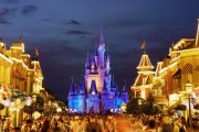 Alertan de animales con rabia en Disney World de Florida