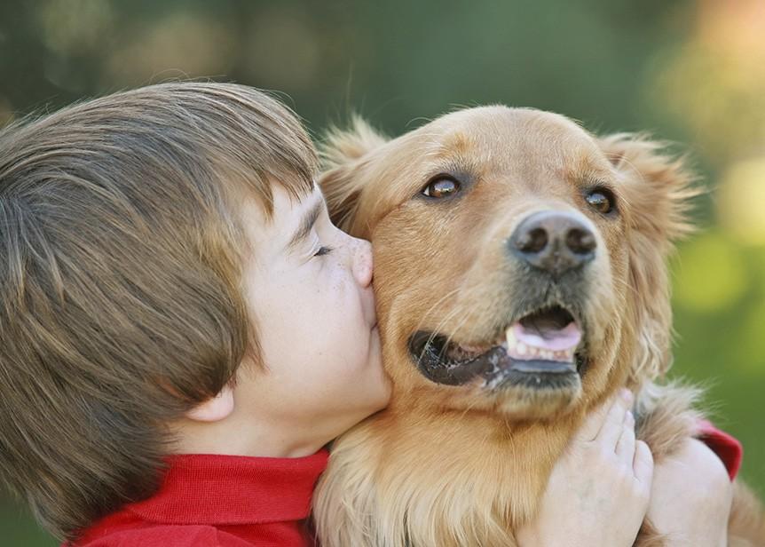 Tener un perro ayuda a mejorar la salud cardiovascular