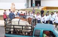 Entregan apoyos de vivienda, salud y para el sector ganadero, en Motul
