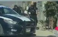 Policía mata de un disparo a un pitbull (VÍDEO)