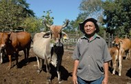 """""""Veterinario en tu rancho"""", de la SEDER, un gran aliado para pequeños productores"""