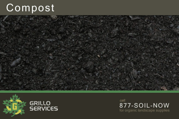 Organic Leaf Compost