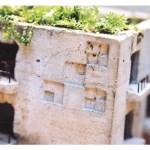 モルタルの小さな家に植物を植えて世界観を楽しもう。