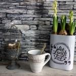 花芽付き球根の苗はどうやって楽しむの?室内で育てる簡単アイディア