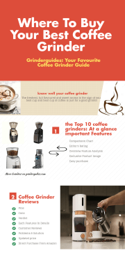 Infographic on Best Rated Coffee Grinders