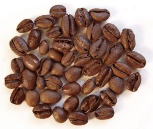 excelsa coffee bean