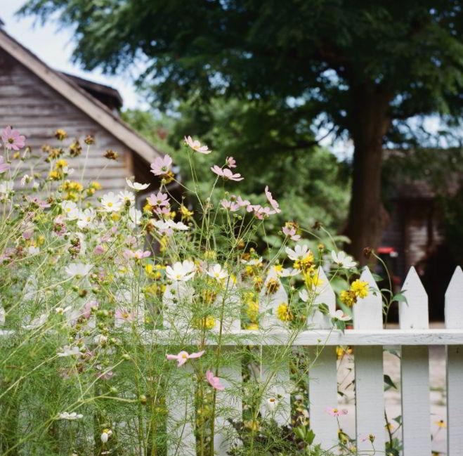 Rustick fence design