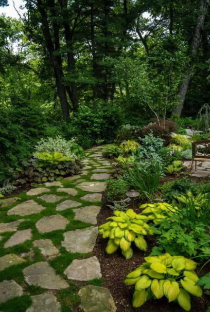 Stone and grass Walkway Ideas
