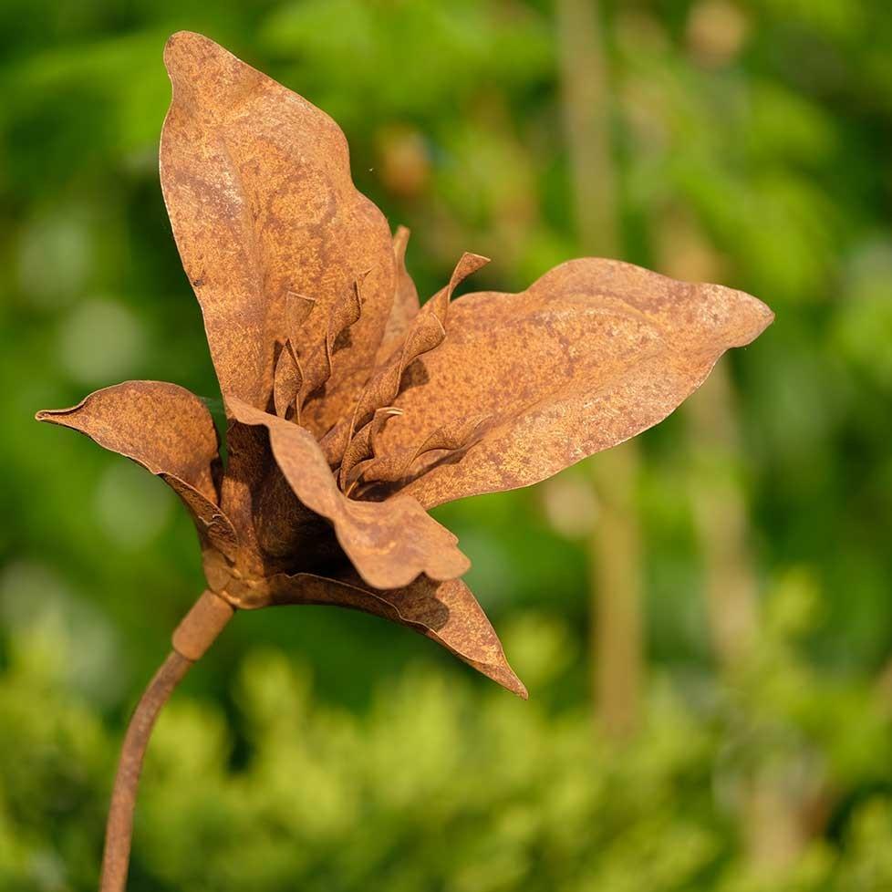 fleur metal rouille n 43