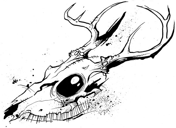 Deerskull
