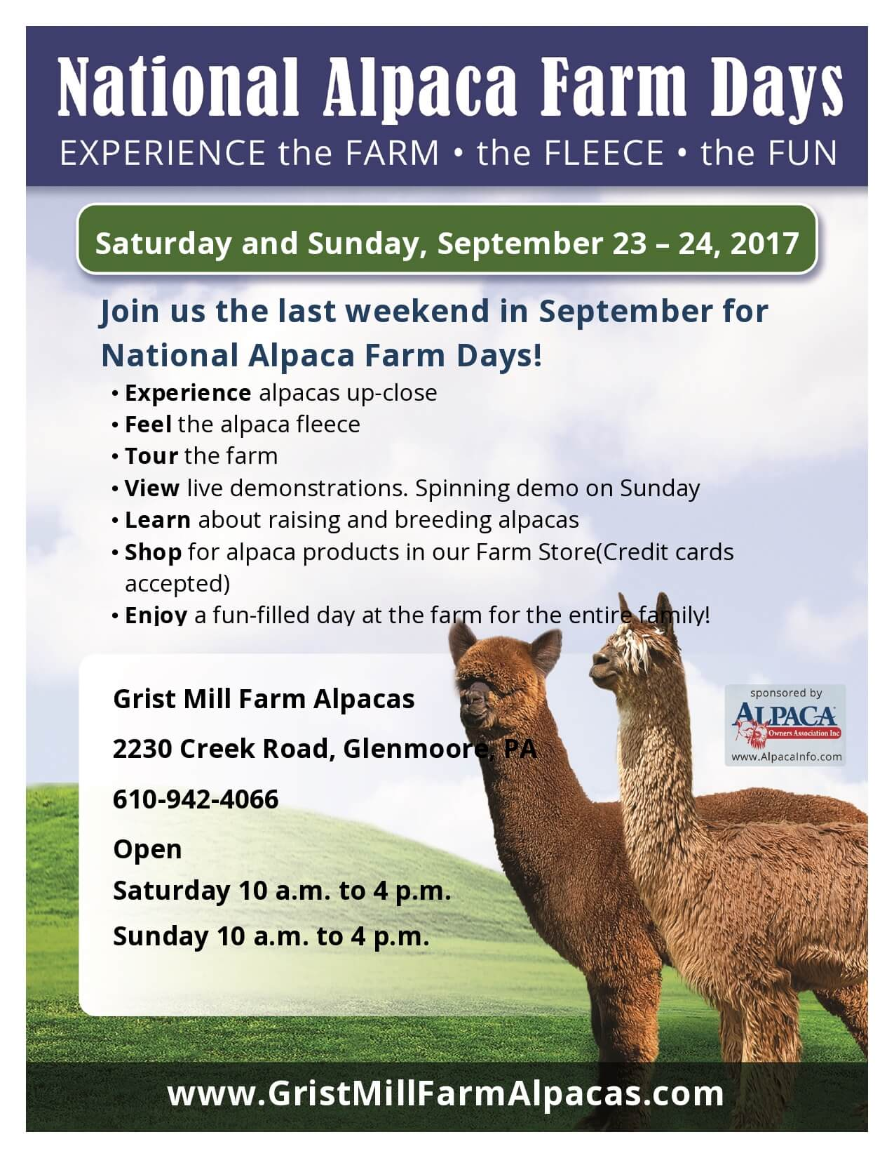 National Alpaca Farm Days at Grist Mill Farm Alpacas