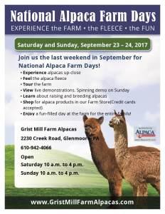 National Alpaca Farm Days at Grist Mill Farm Alpacas