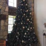 Yep! The Tree is up!!