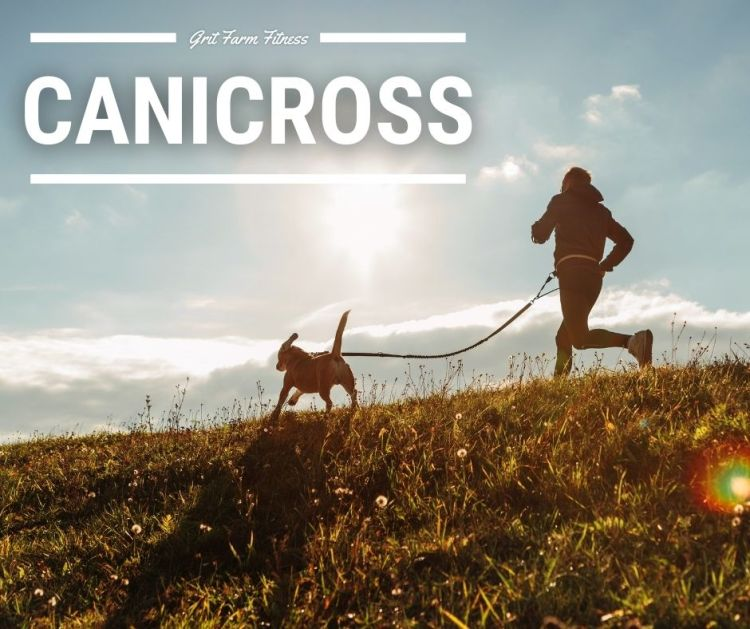 Canicross BC