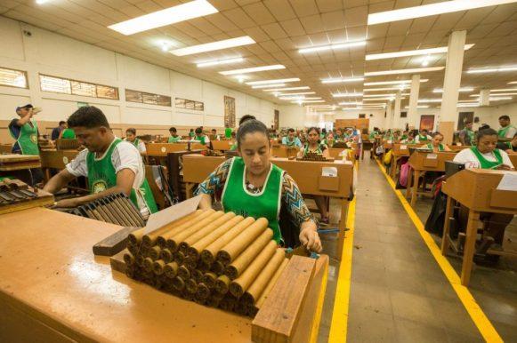 Perdomo factory tour_107