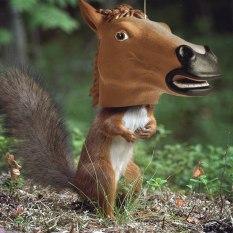HORSE HEAD SQUIRREL FEEDER - $23.49