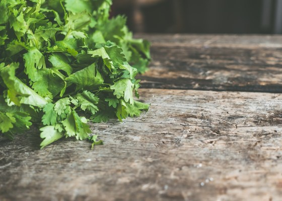 cilantro for chili dusted pork chops