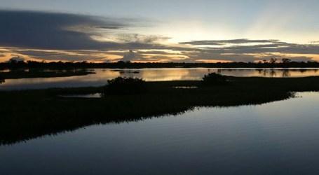 Cine News: Amazônia – O Despertar da Florestania