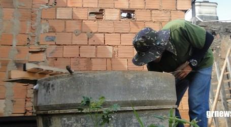 Agentes de combate a Dengue visitam residências no fim de semana e feriado; objetivo é orientar paraminenses