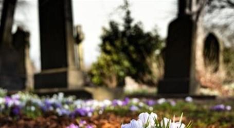 COVID-19 mata 674 pessoas na Espanha em 24 horas, mas ritmo é de desaceleração