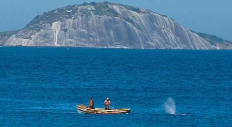 Brasil assina Declaração de Copenhague que propões combate à pesca ilegal