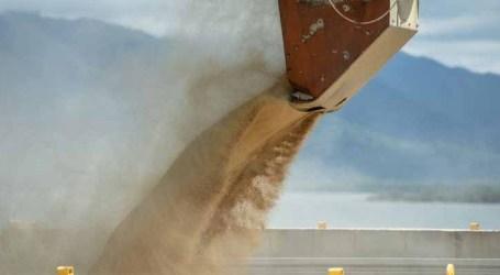 Valor da produção agrícola em 2020 bate novo recorde e supera R$ 470 bilhões