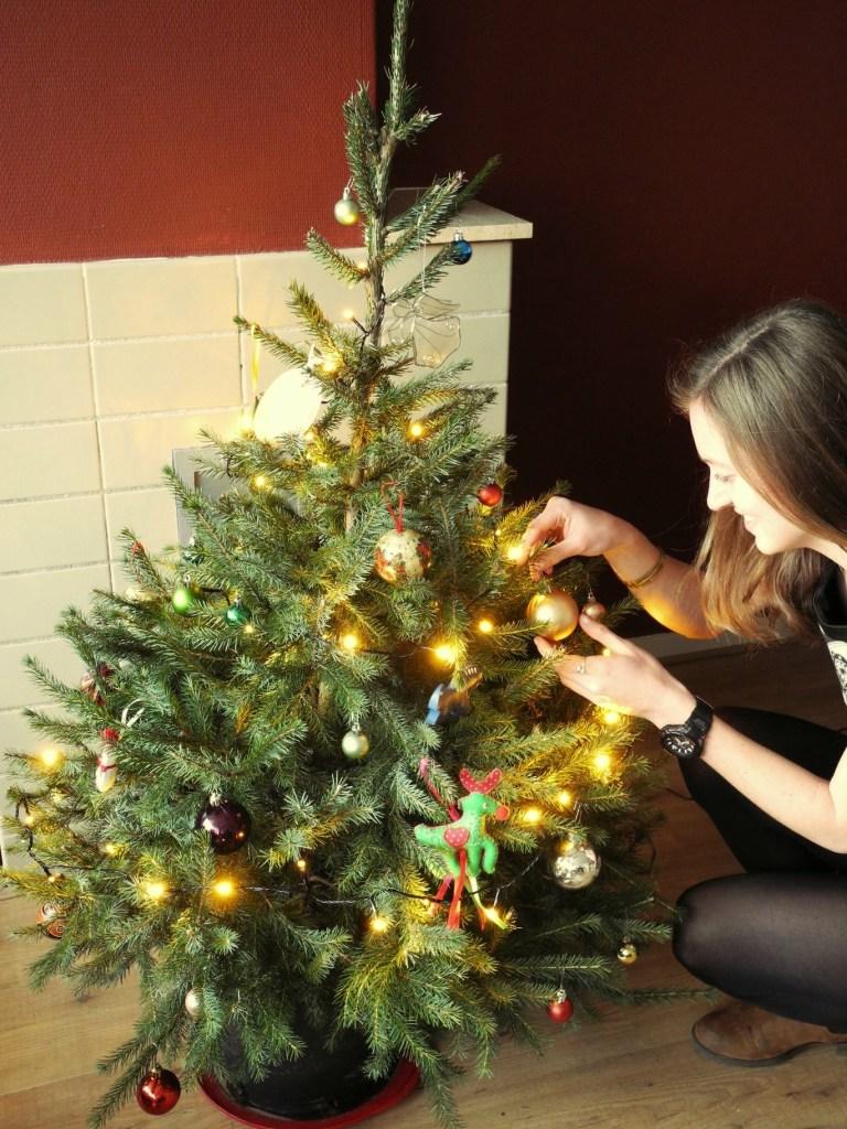 kerstboom adopteren