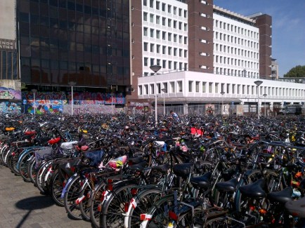 I have never seen so many bicycles in my life..