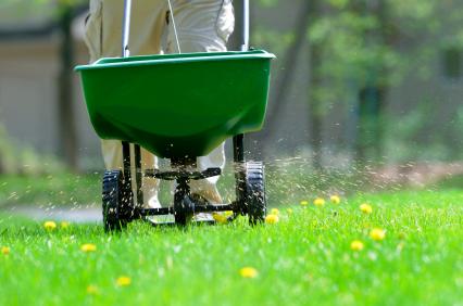 lawn-fertilizer (2)