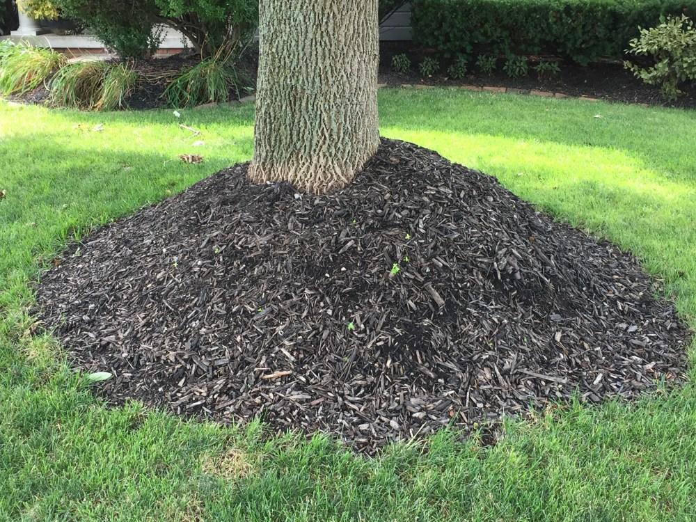 mulch mulch volcano (2)
