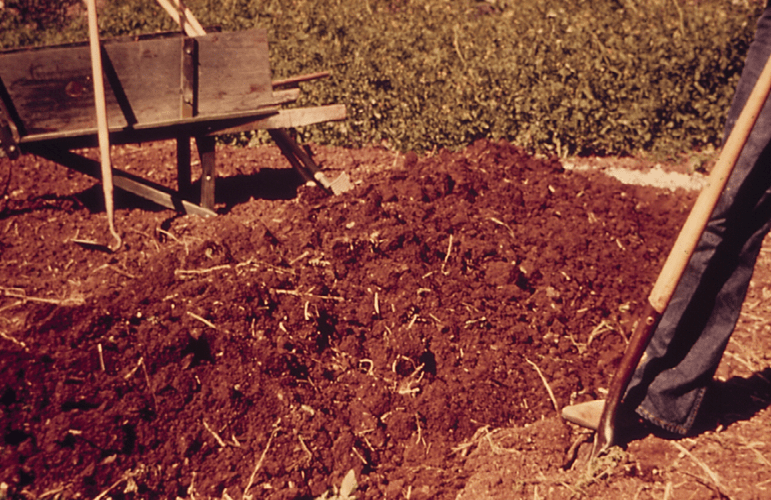 amending soils 2