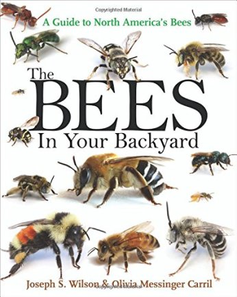 the_bees_in_your_backyard