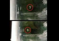 Viral Video Penampakan Sosok Mirip Pocong Dikejar Anjing di Sulawesi Selatan, Pakar Telematika Roy Suryo Sebut Bohongan