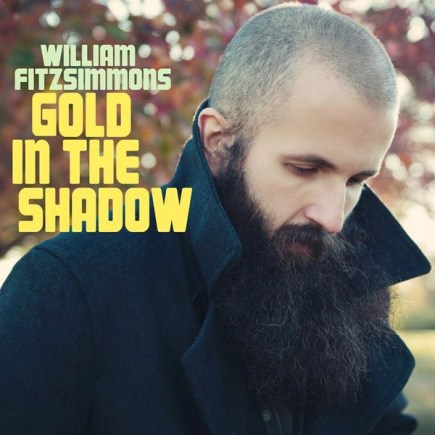 WILLIAM FITZSIMMONS 'Gold in the shadow' - VINYL