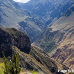 Reisdagboek #3: hiken in de Colca Canyon