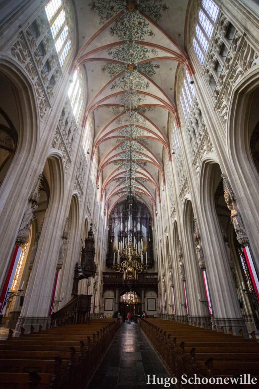 Het interieur van de grote kathedraal Sint-Jan in Den Bosch. Met prachtige gouden kroonluchter.