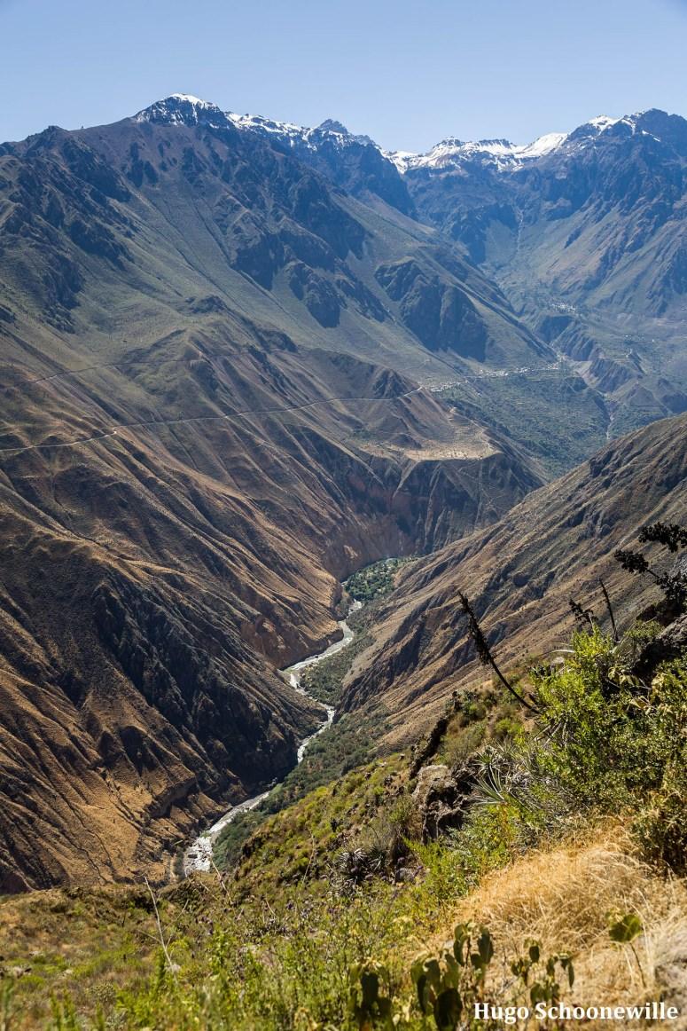 Uitzicht over de Colca Canyon in Peru met de rivier in de kloof.