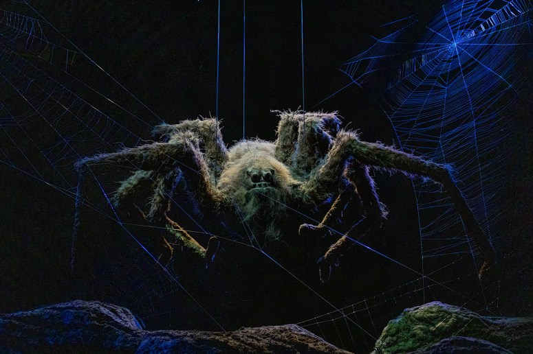 Enge spin (Acromantula) in het Verboden Bos deel van de The Making of Harry Potter.