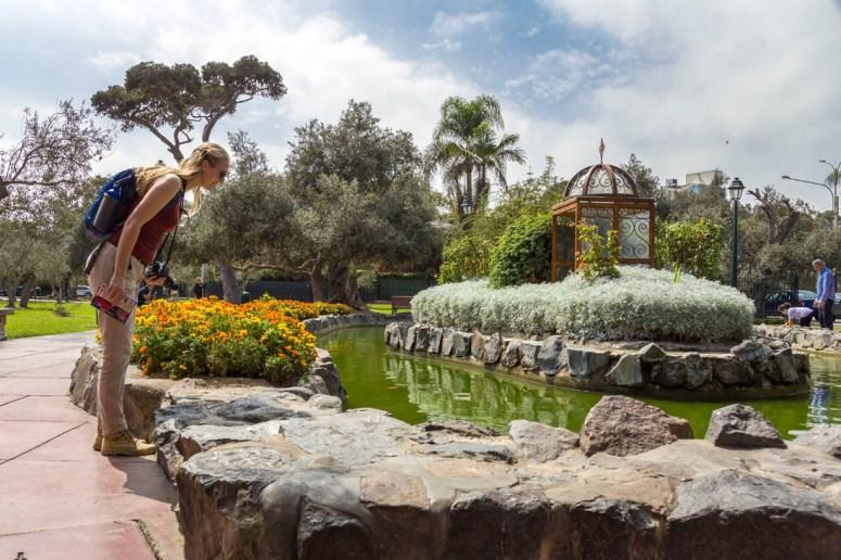 Manouk staat gebogen over een mooiee vijver in het groene park Bosque el Olivar in de wijk San Isidro in Lima, vol olijfbomen.