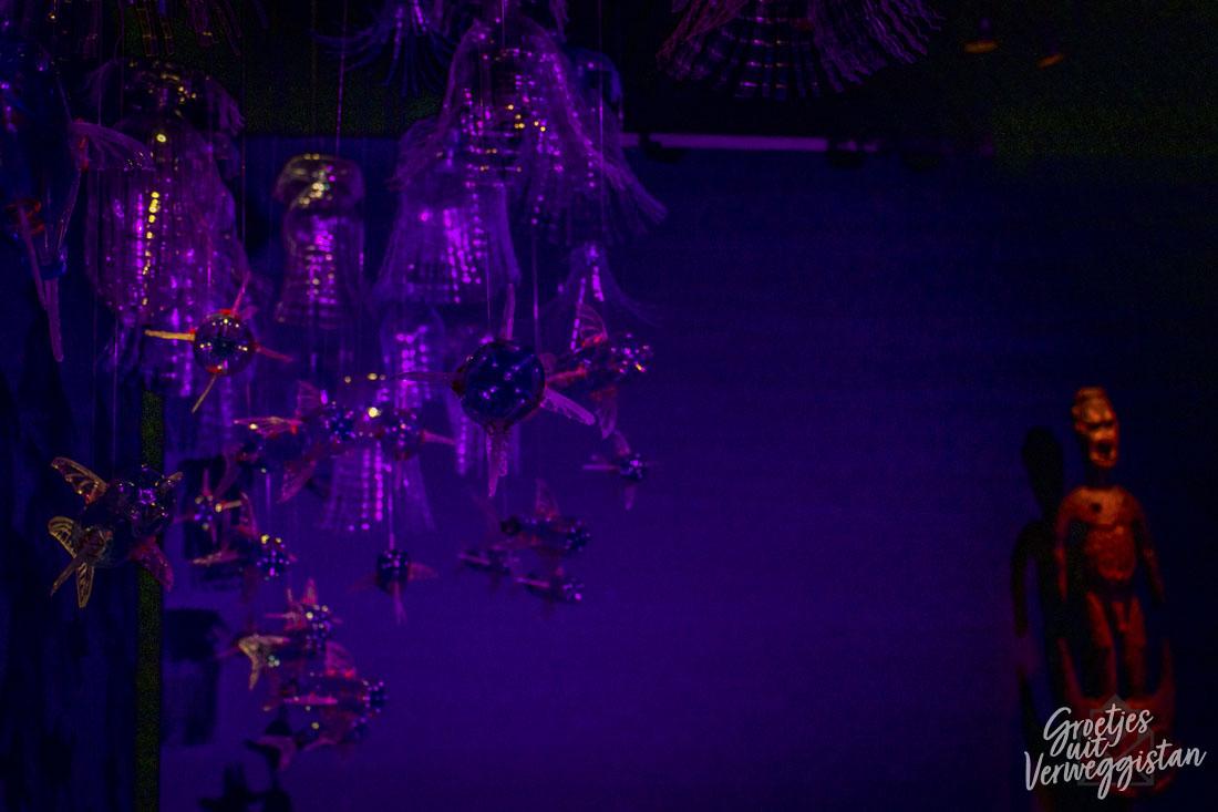 Vissen zwemmen in paars licht in kunstwerk Bottled Ocean 2120 in Museum Volkenkunde