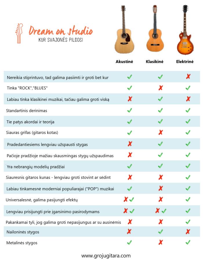 Kaip issirinkti gitara